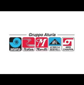 Gruppo Aturia Logo