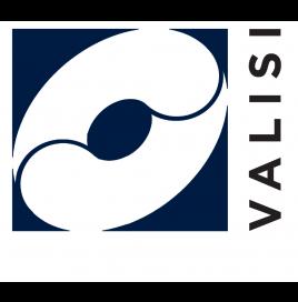 Valisi Logo